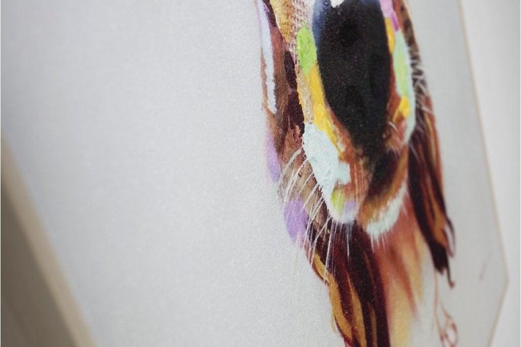 Obraz PES BELO POP ART 50x50 cm - olejomaľba