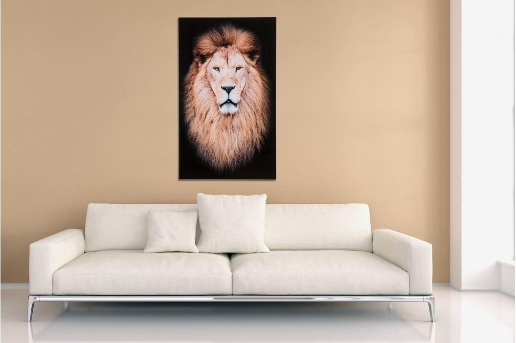 Obraz MUSTAFA 100x60 cm - sklo