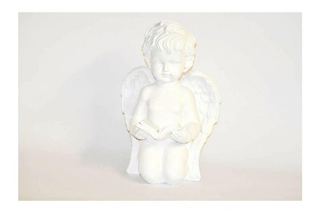 Anjel biely klačiaci s knihou