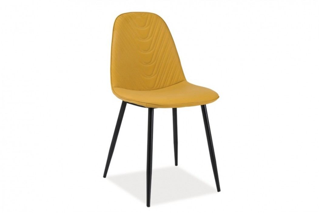 Stolička teo a