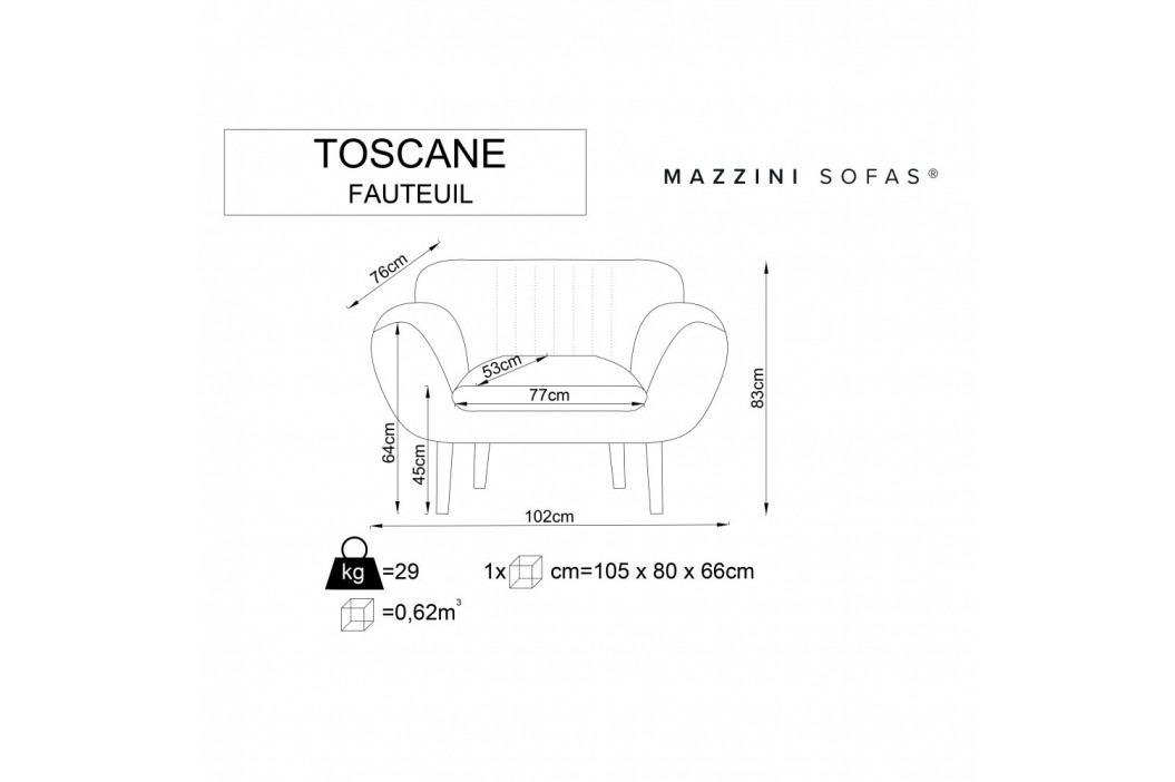 Sivé kreslo Mazzini Sofas Toscane, čierne nohy