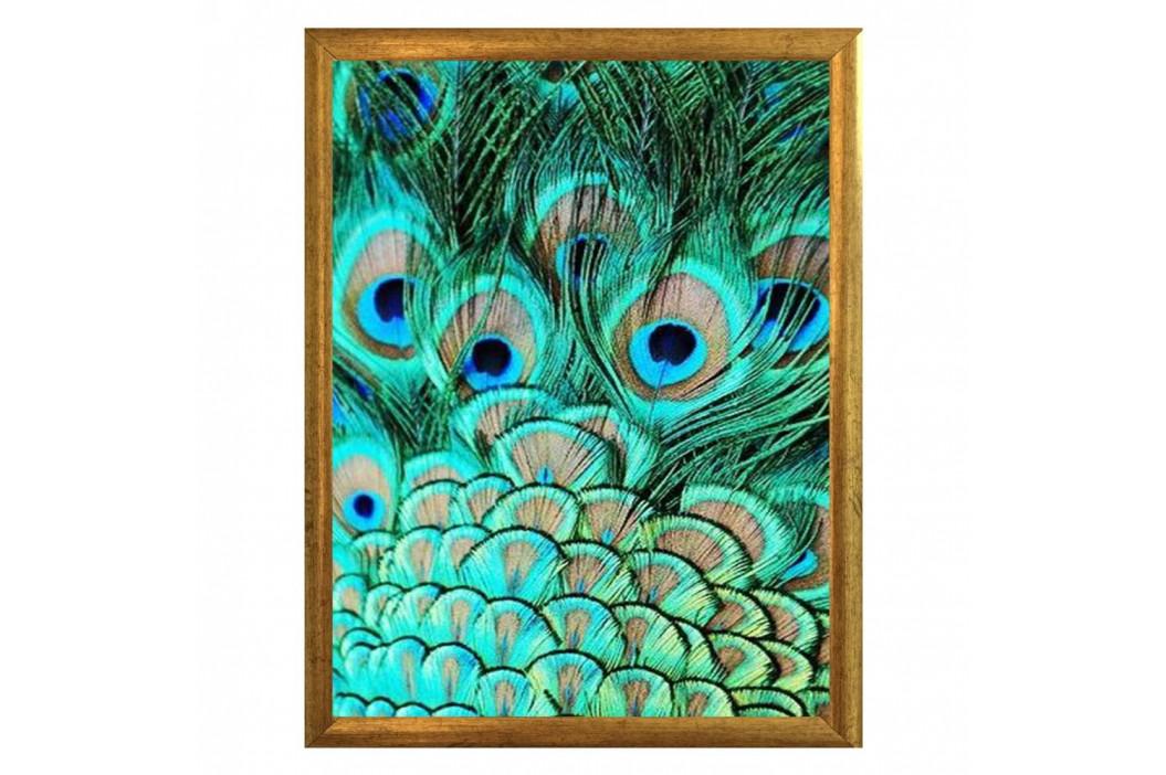 Plagát v ráme v zlatej farbe Piacenza Art Peacock, 33,5 x 23,5 cm