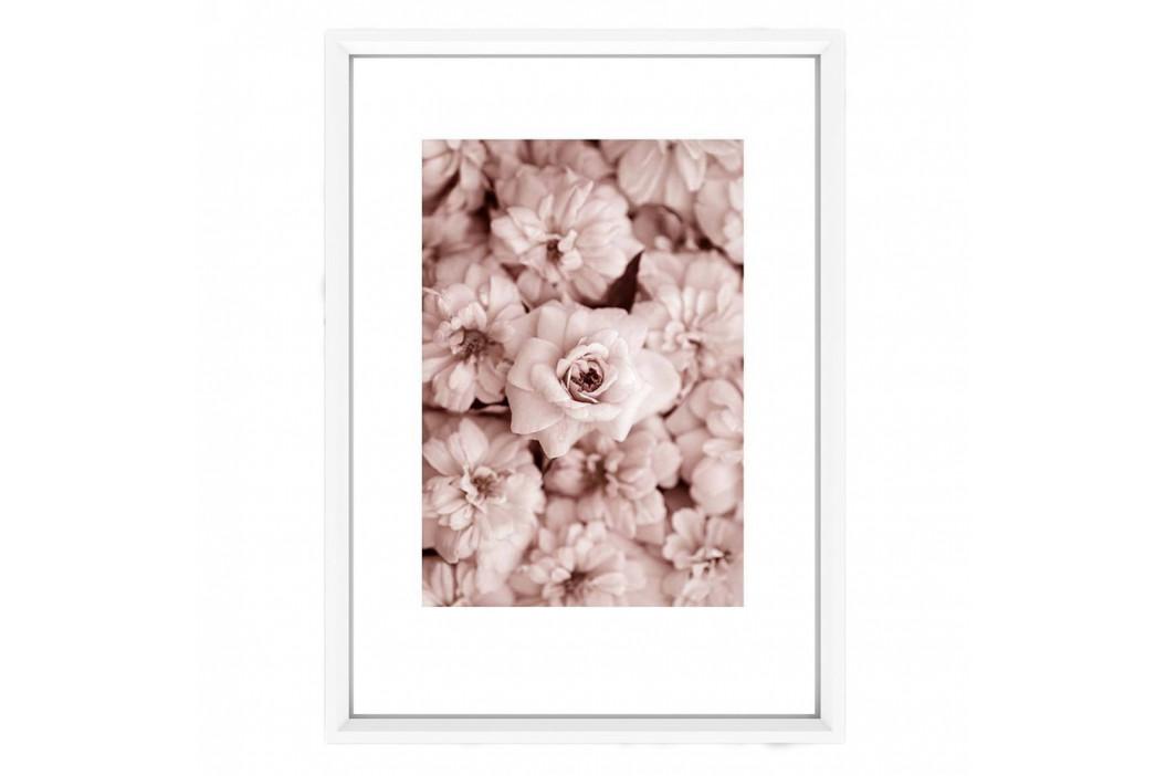 Plagát v bielom ráme Piacenza Art Bloom, 33,5 x 23,5 cm