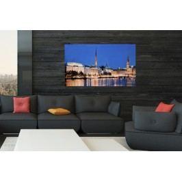 Obraz HAMBURG ASTER 50x70 cm - sklo