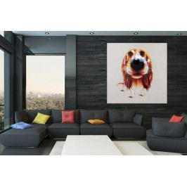 Bighome - Obraz PES BELO POP ART 80x80 cm - olejomaľba