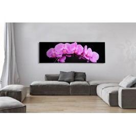 Obraz ORCHIDEA 140X45 - ružová