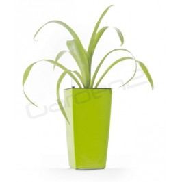 Samozavlažovací kvetináč G21 Linea mini zelený 14cm
