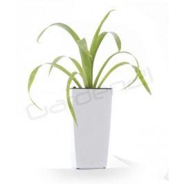 Samozavlažovací kvetináč G21 Linea mini biely 14cm