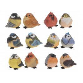 Vtáčik mix