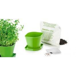 Tescoma súprava na pestovanie byliniek SENSE, tymián