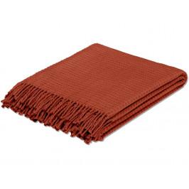 TODAY TERRA ROSA bavlněný pléd 125x150 cm červený