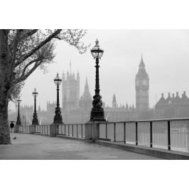 Wizard+Genius W+G fototapeta Hmla v Londýne 366x254 cm