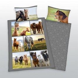 Herding Herding obliečky Kone 140x200,70x90