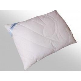 2G Lipov Vankúš CIRRUS Microclimate Cool touch 100% bavlna - 70x90 cm