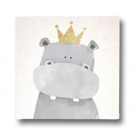 Obraz na plátne King Rhino