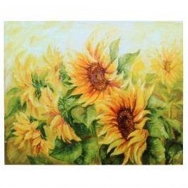 Obraz na plátne Slnečnica