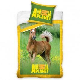 Bavlnené obliečky Animal Planet žriebätko, 140 x 200 cm, 70 x 90 cm