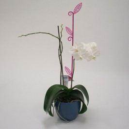 Tyčka k orchideji list, priesvitná fialová, 2 ks, Plastia