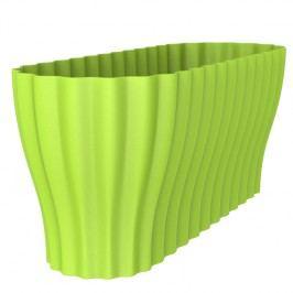 Truhlík Triola zelená, Plastia