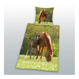 HERDING Bavlnené obliečky Kone na pastve 140x200, 70x90 cm