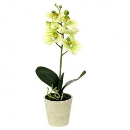 Umelá kvetina orchidea zelená, 39,5 cm, Autronic