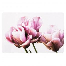 Tulipán 28 x 43 cm, sada 4 ks