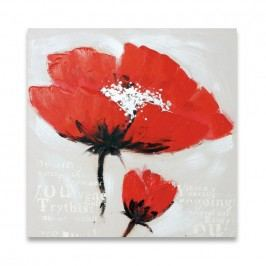 Autronic Obraz na plátne Poppy, OBR755843
