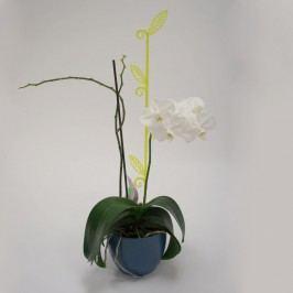 Tyčka k orchideji list, priesvitná zelená, 2 ks, Plastia