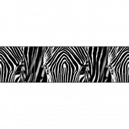 Samolepiaca bordúra Zebra, 500 x 14 cm