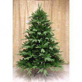 Jedľa Frasier zelená, 210 cm
