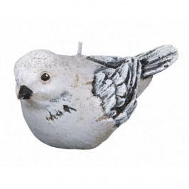 Dekoratívna sviečka vtáčik, sivá