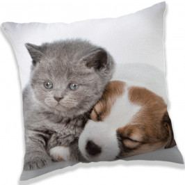 Jerry Fabrics Vankúšik Puppy and Kitten, 40 x 40 cm