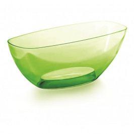 Prosperplast Dekoratívna miska Coubi zelená, 36 cm, 36 cm