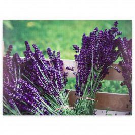 Obraz na plátne Lyon Lavender, 78 x 58,5 cm,