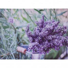 Obraz na plátne Amiens Lavender, 78 x 58,5 cm