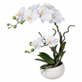 Umelá Orchidea v kvetináči biela, 42 cm 115812-40