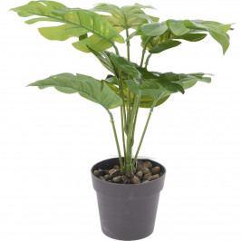 Koopman Umelá rastlina v kvetináči Noelle, 30 cm