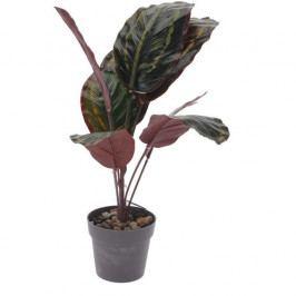 Koopman Umelá rastlina v kvetináči Patty, 30 cm