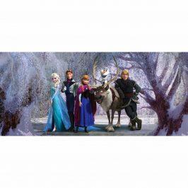 Detská fototapeta Ľadové kráľovstvo, 202 x 90 cm