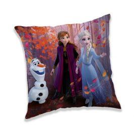 Jerry Fabrics Vankúšik Frozen 2 Forest, 40 x 40 cm