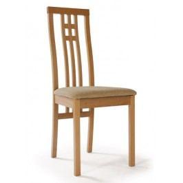 Jedálenská stolička BC-2482 BUK3
