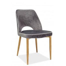 Jedálenská stolička Verdi (sivá)