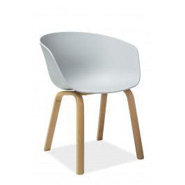 Jedálenská stolička Ego (svetlosivá)