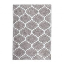 Kusový koberec Grace 802 Silver-White (120 x 170 cm)