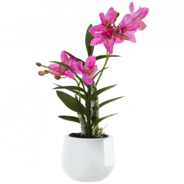 umelá Rastlina Japonská Orchidea