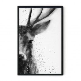 Plagát v ráme Insigne Deer, 70 x 110 cm