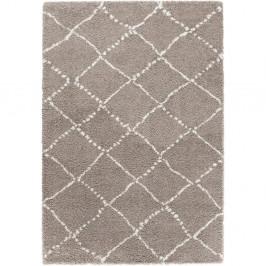 Hnedý koberec Mint Rugs Hash, 160 x 230 cm