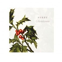 Sada 20 kusov obrúskov Talking Tables Merry Christmas