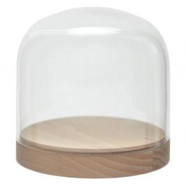 Sklenená vitrínka Wireworks Pleasure Dome Beech, 13cm