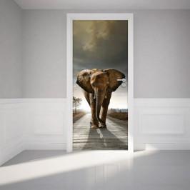 Adhezívna samolepka na dvere Ambiance Elephant